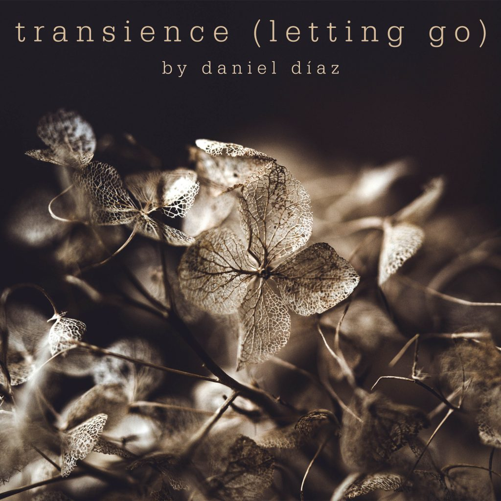 transcience letting go