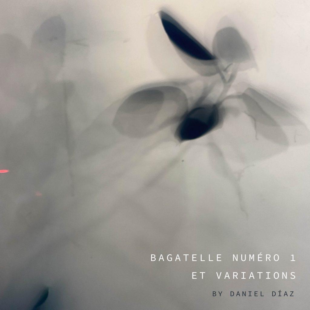 bagatelle numero 1 variations EP